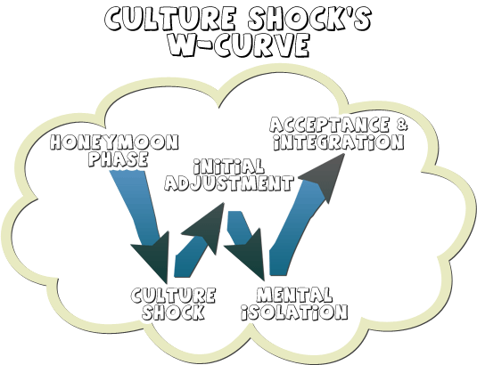 W-shaped Culture Shock curve from englishgenie.com