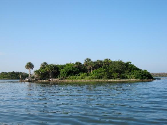 An island in Mosquito Lagoon. Photo: Yoel Stuart.