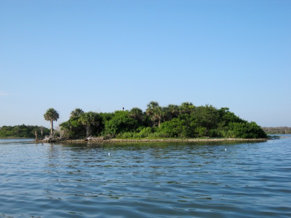 An island in Mosquito Lagoon. Photo: Yoel Stuart.
