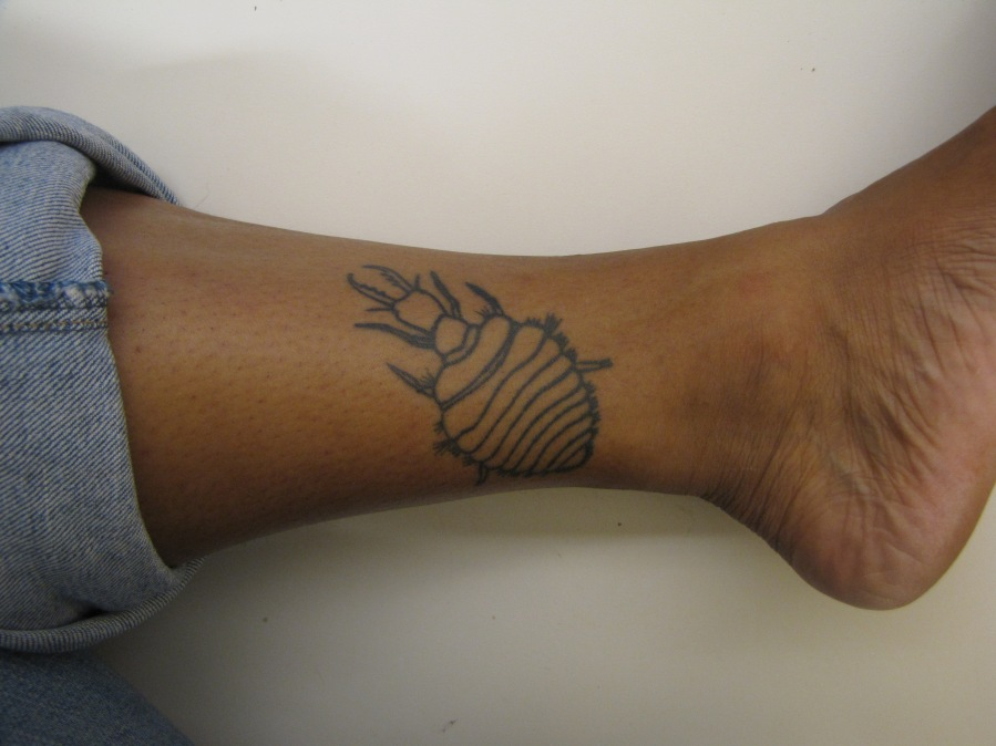 My first tattoo: an antlion larvae, my first study organism.