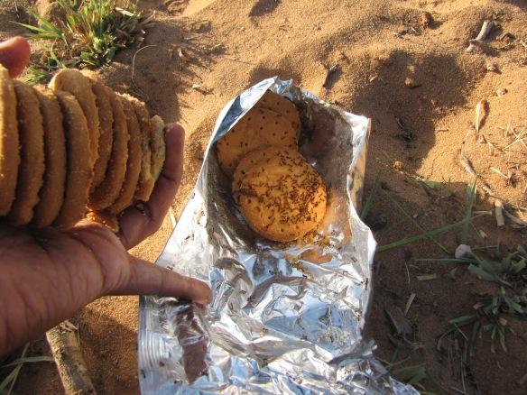 horrid biscuit eating ants